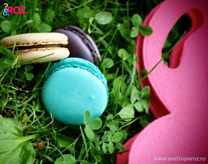 macarons-la-picnic