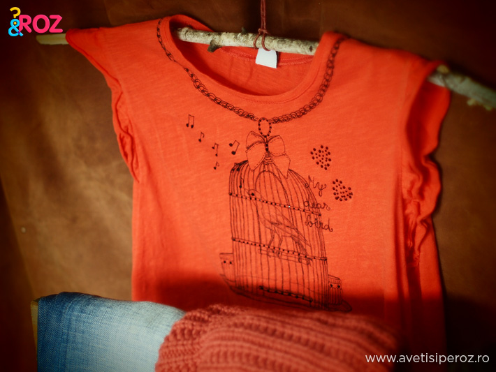 tricou-zara-cu-colivie