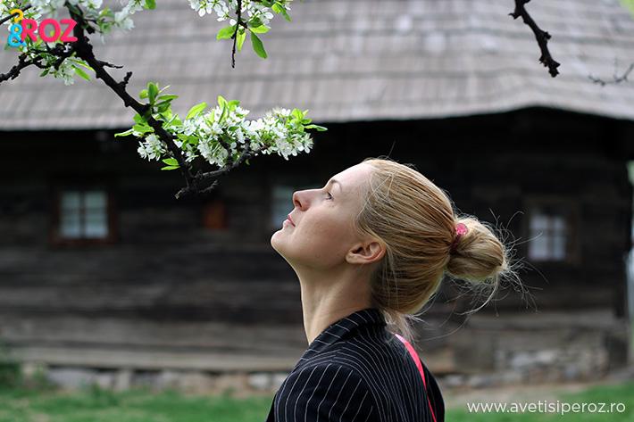 copac inflorit muzeul taranului