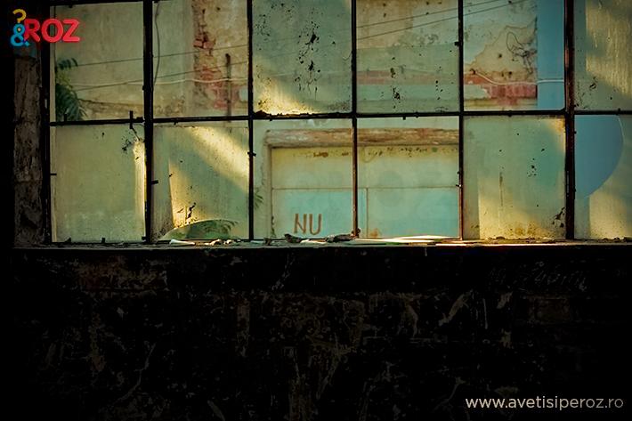 ferestre