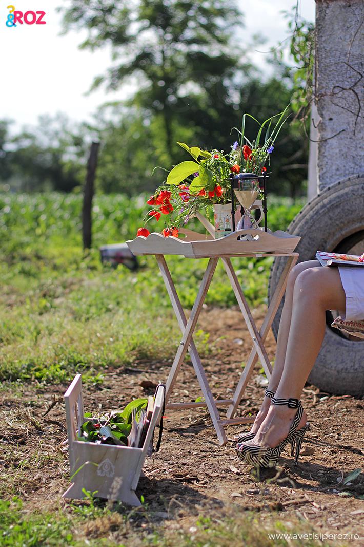 picnic in gradina