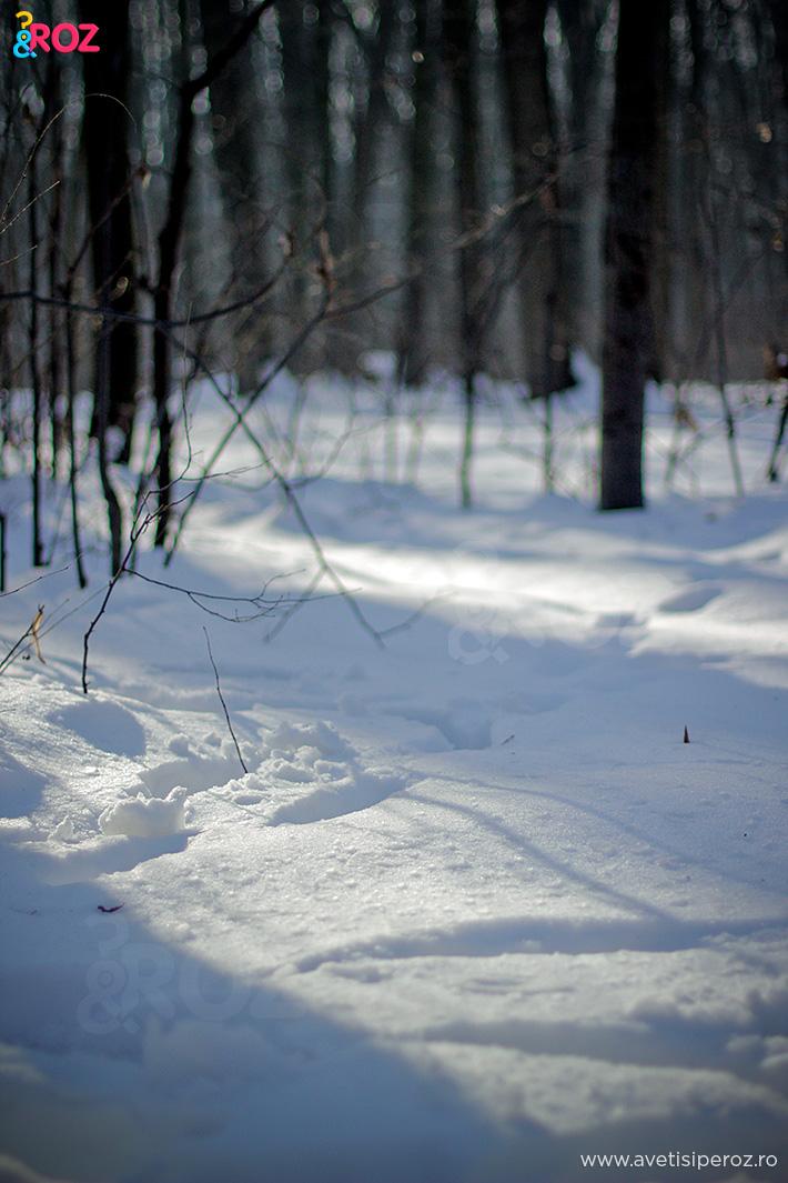 iarna la baneasa