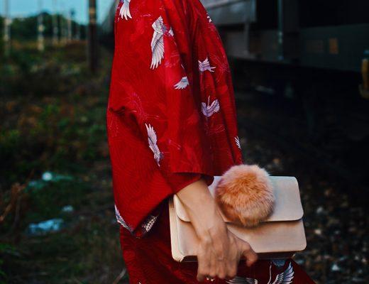 kimono-japonez-cu-cocori
