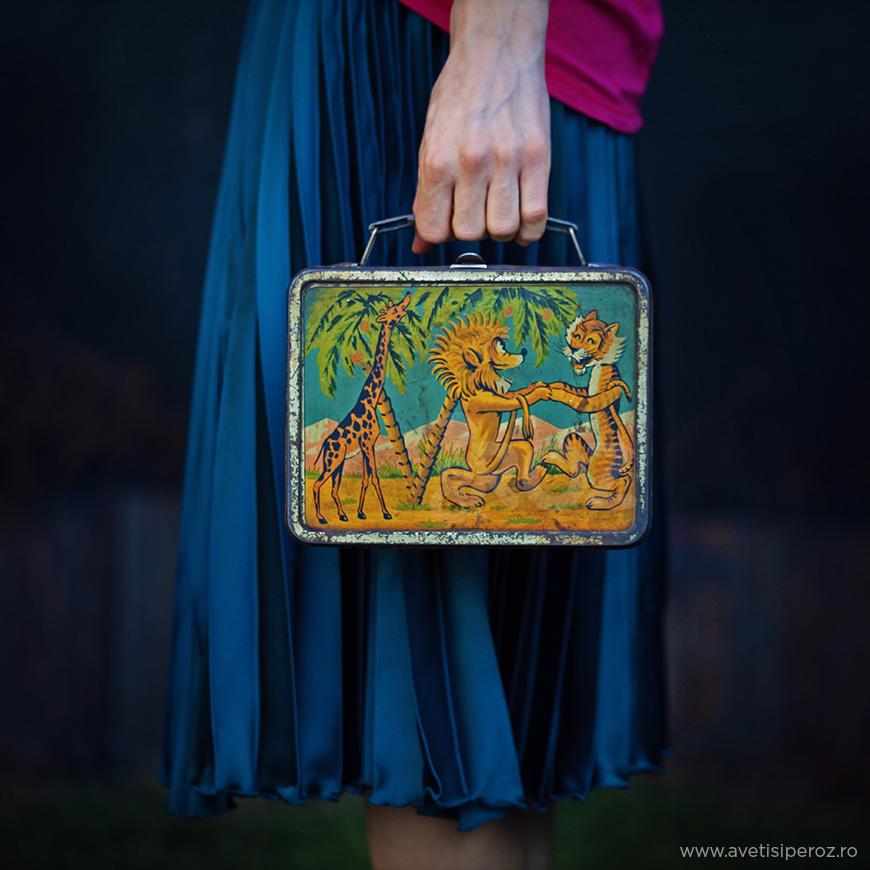 cutie metalica veche pe post de geanta