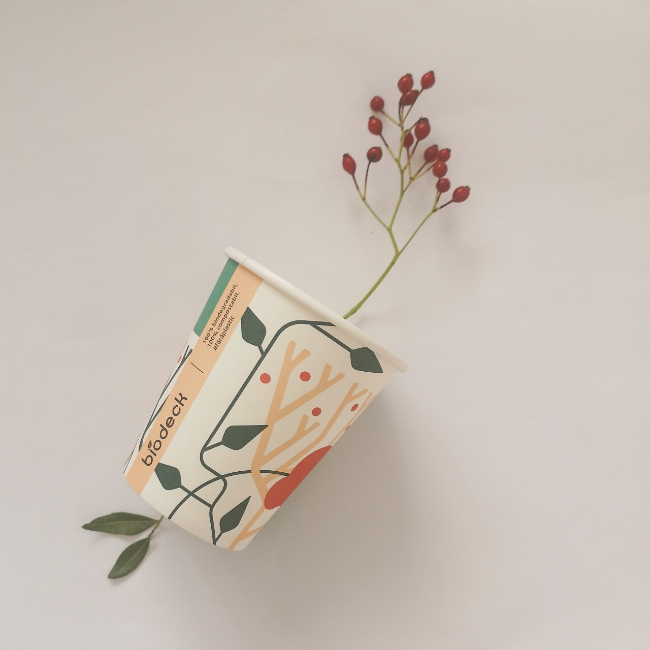 pahare biodeck din plante