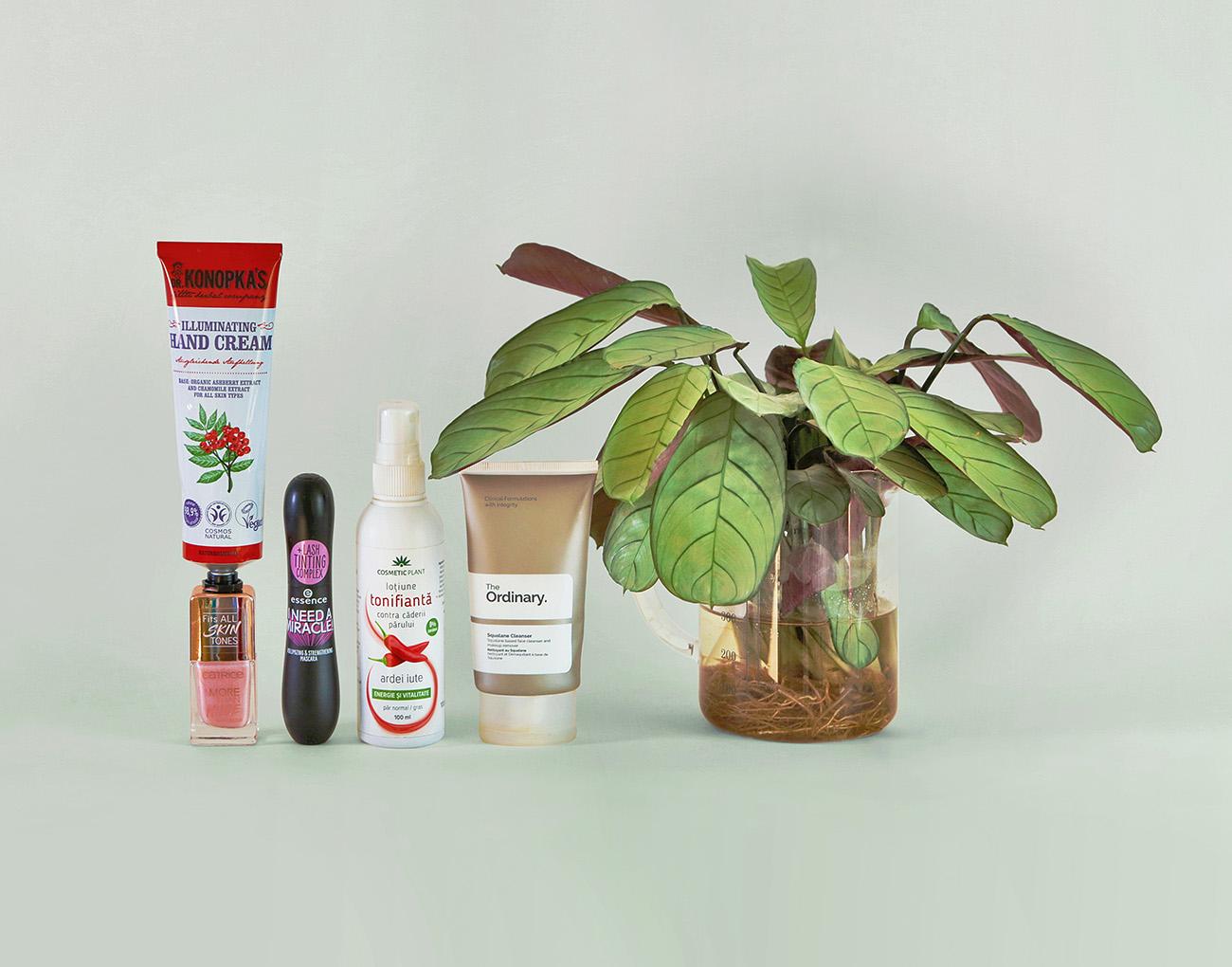 produse cosmetice vegane pentru un buget redus