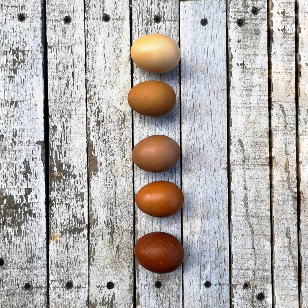 oua vopsite eco cu ingrediente din bucatarie