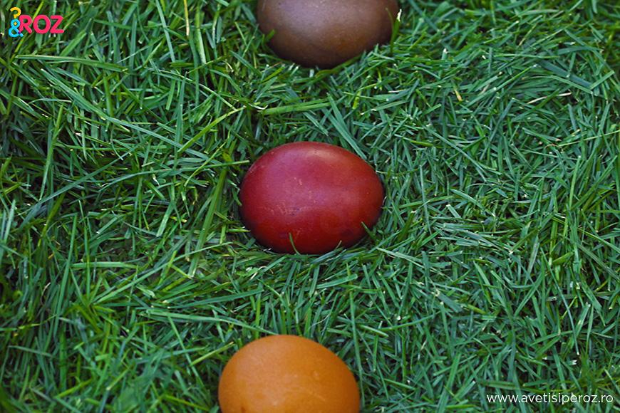 oua de paste vopsite cu turmeric